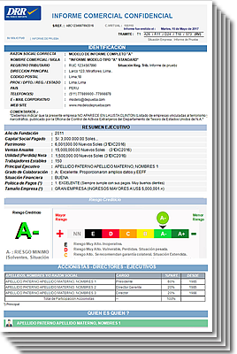 main sheet of a business credit report